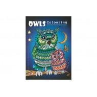 MÅLARBOK A4 OWLS 32SIDOR
