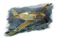 P-40B/C HAWK-81A 1/72